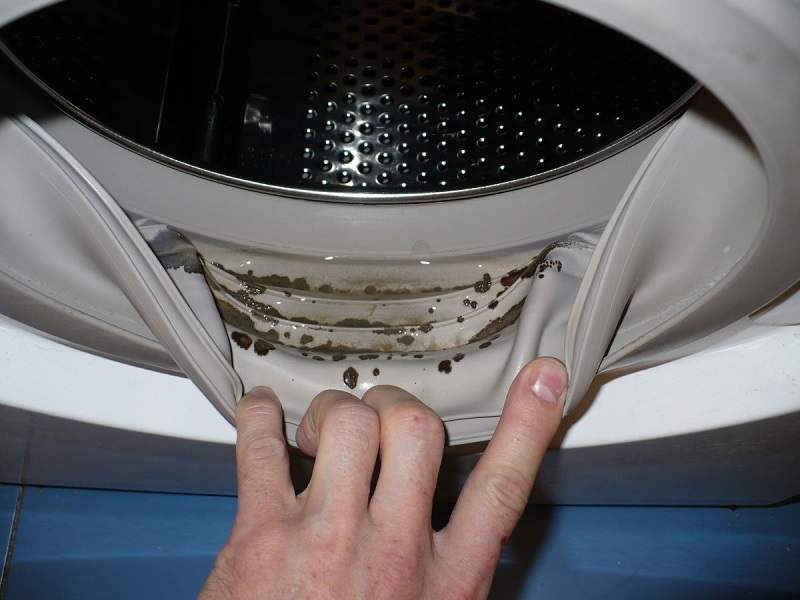 Remove Mold From Your Washing Machine To Prevent Skin